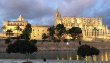 Cathedral De Mallorca, Sapin