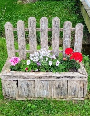 amish flowers